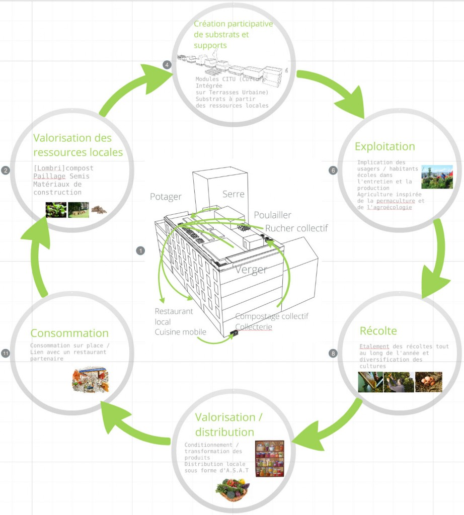 image cycle prezi