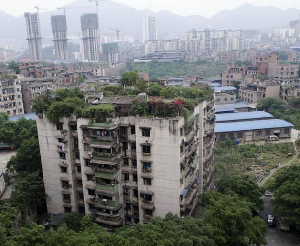 Chongqing-urban-rooftop-apartment-farm