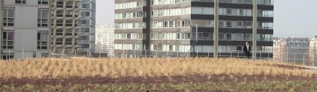 A se passe ailleurs toits vivants - Toiture vegetalisee paris ...